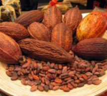 Minority lied in cocoa fertiliser sale claim – MP