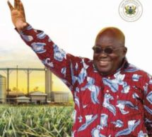 Akufo-Addo to launch 1D1F August 25