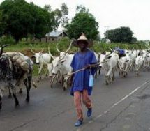 leaders present 6-point solution to the Fulani menace in Kwahu