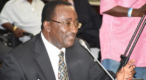 AfDB considers proposal to support Planting for Food & Jobs