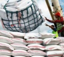 US$170m to be saved in rice, maize imports