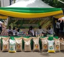 Right fertiliser use will help achieve cocoa target